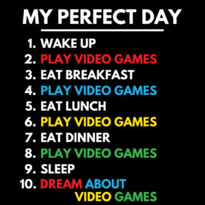 my perfect day play video games funny
